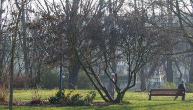 Un imam dans le parc de Vandoeuvre-min